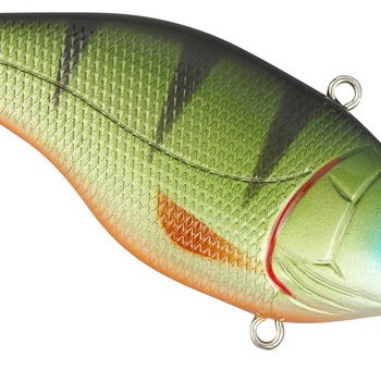 Aruku Shad WR75 Green Perch